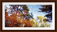 Harlow Creek Fine Art Print