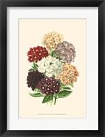 Bountiful Bouquet I Fine Art Print