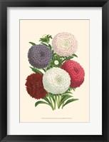 Bountiful Bouquet II Fine Art Print