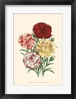 Bountiful Bouquet IV Fine Art Print