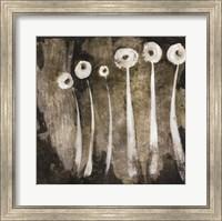 White Flowers Abstract II Fine Art Print