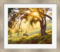 Restful Radiance Fine Art Print