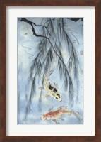 Golden Koi Fine Art Print