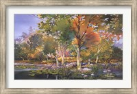 Birch Pond Fine Art Print