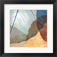 Blue and Orange Leaves II Fine Art Print