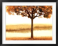 Golden Morning I Fine Art Print