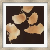 Leaves of Origin I Fine Art Print