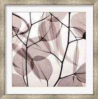 Eucalyptus Leaves [Positive] Fine Art Print
