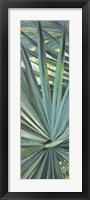 Fan Palm I Fine Art Print