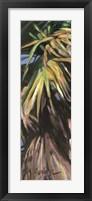 Wild Palm I Fine Art Print