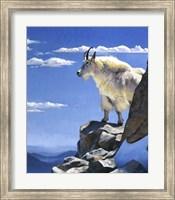Rocky Mountain High Fine Art Print