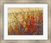 Field of Spring Flowers I Fine Art Print