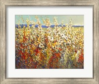 Field of Spring Flowers II Fine Art Print