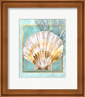 Scallop Shell and Coral Fine Art Print