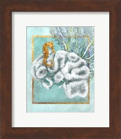 Coral and Seahorse Fine Art Print