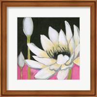 Bliss Lotus III Fine Art Print