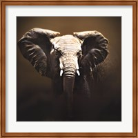On Safari Fine Art Print