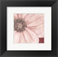 Grandiflora V Fine Art Print