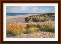 Sandy Shores Fine Art Print