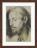 Study of the Head of a Bearded Man Fine Art Print