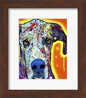 Great Dane Fine Art Print