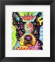 Boston Terrier Crowned Fine Art Print