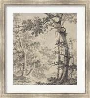 Wooded Landscape Fine Art Print