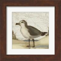 Beach Bird II Fine Art Print