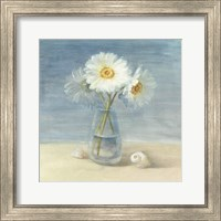 Daisies and Shells Fine Art Print