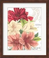 Azalee Jardin II Fine Art Print
