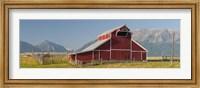 Barn in a field with a Wallowa Mountains in the background, Joseph, Wallowa County, Oregon, USA Fine Art Print