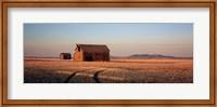 Barn in a field, Hobson, Montana, USA Fine Art Print