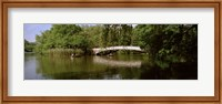 Bridge across a lake, Central Park, Manhattan, New York City, New York State, USA Fine Art Print