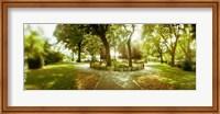 Trees in a park, McCarren Park, Greenpoint, Brooklyn, New York City, New York State, USA Fine Art Print