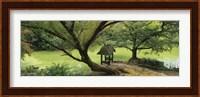 Trees near a pond, Central Park, Manhattan, New York City, New York State, USA Fine Art Print