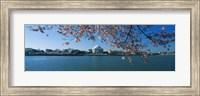 Monument at the waterfront, Jefferson Memorial, Potomac River, Washington DC, USA Fine Art Print