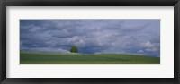 Storm clouds over a field, Zurich Canton, Switzerland Fine Art Print
