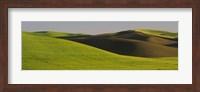 Wheat Field On A Landscape, Whitman County, Washington State, USA Fine Art Print