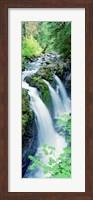 Sol Duc Falls Olympic National Park WA Fine Art Print