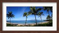 Palm trees on the beach, Maui, Hawaii, USA Fine Art Print