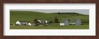 Farm with double barns in wheat fields, Washington State, USA Fine Art Print