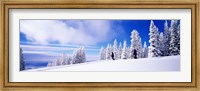 Steamboat Springs, Colorado, USA Fine Art Print