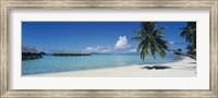 Palm Tree On The Beach, Moana Beach, Bora Bora, Tahiti, French Polynesia Fine Art Print