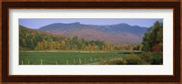 Woman cycling on a road, Stowe, Vermont, USA Fine Art Print