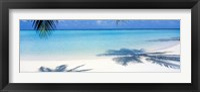 Palm shadows, Laguna Maldives Fine Art Print