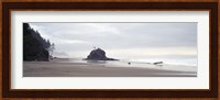 Coast La Push Olympic National Park WA Fine Art Print