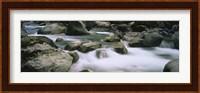River flowing through rocks, Skokomish River, Olympic National Park, Washington State, USA Fine Art Print