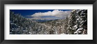 Snow covered pine trees in a forest with a lake in the background, Lake Tahoe, California, USA Fine Art Print