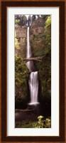 Waterfall in a forest, Multnomah Falls, Columbia River Gorge, Oregon, USA Fine Art Print