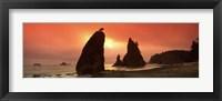 Silhouette of seastacks at sunset, Olympic National Park, Washington State Fine Art Print
